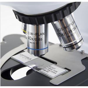 Optika Microscopio B-510BF, brightfield, trino, W-PLAN IOS, 40x-1000x, EU