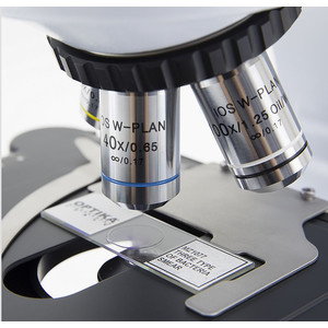 Optika Microscopio Mikroskop B-510-2FIVD, trino, 2-head (face-to-face), W-PLAN IOS, 40x-1000x, IVD
