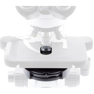Optika Microscopio Mikroskop B-510PHIVD, trino, phase, W-PLAN, IOS, 40x-1000x, EU, IVD