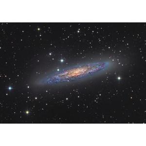 Orion Optics UK Telescopio N 300/1140 AG12 Carbon Astrograph OTA