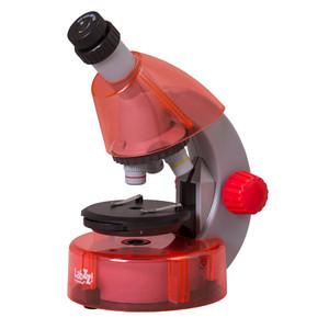 Levenhuk Microscopio LabZZ M101 Orange