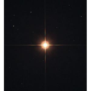 noctutec Maschera per spikes easy-spike M52