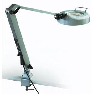 StarLight Opto-Electronics Magnifying glass LL6-PW-UV365, 3 × pur-weiß (6.000 K), 3 × UV (365 nm)