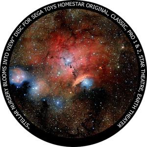 Redmark Diapositiva per il planetario Sega Homestar con la Formazione Stellare