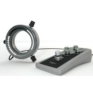 StarLight Opto-Electronics RL4-66-S4 A,  segment.,  amber (590 nm), Ø 66mm