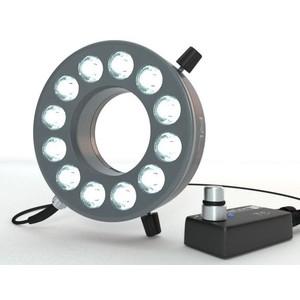 StarLight Opto-Electronics RL12-10s PW, pur-weiß (6.000 K), Ø 66mm