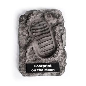 AstroReality Footprint on the Moon