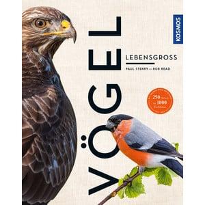 Kosmos Verlag Vögel lebensgroß