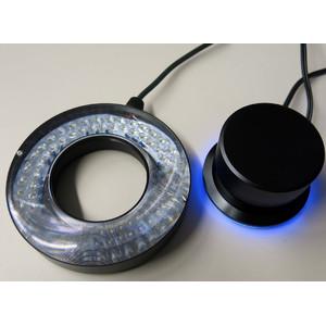 Pulch+Lorenz LED-Beleuchtung UV, Ultraviolett, 50mm