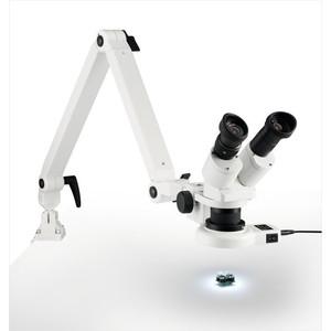 Eschenbach Microscopio stereo 33213, braccio snodato