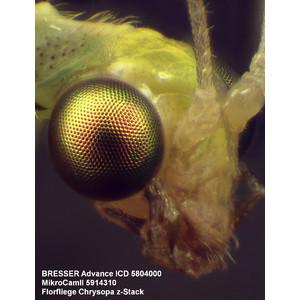 Bresser Microscopio stereo zoom Advance ICD 10-160x