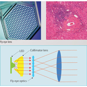 Nikon Microscopio Mikroskop ECLIPSE E200, LED, trino, PH, infinity, e-plan, 40x-1000x