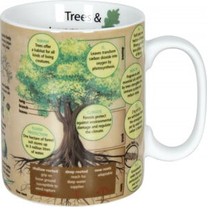 Könitz Mugs of Knowledge Trees