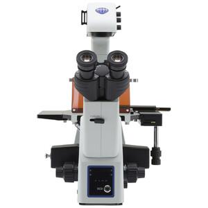 Optika Microscopio Mikroskop IM-5FLD-UK, trino, invers, FL-LED, w.o. objectives, UK