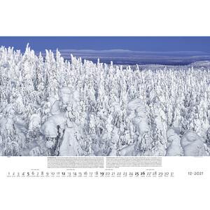 Palazzi Verlag Kalender Wälder der Erde 2021