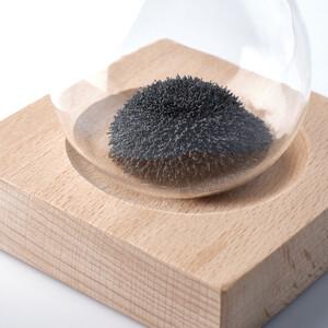 AstroMedia The Magnetic Egg Timer