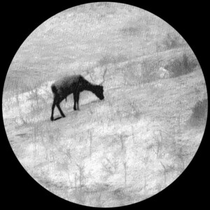 Lahoux Visore notturno Hemera Standard Onyx