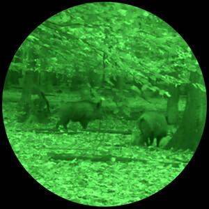 Lahoux Visore notturno Hemera Standard + Green