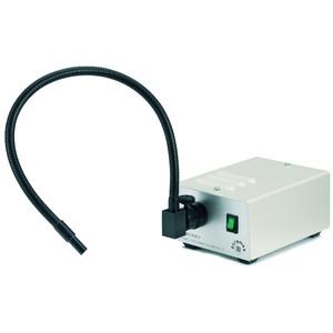 Euromex Illuminatore a luce fredda, LE.5209, 20 Watt con conduttore di luce, 6mm 40cm