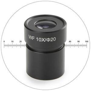 Novex Oculare wide fiels 50.811, WF 10x con micrometro