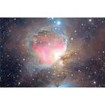 La grande nebulosa di Orione M42, ripresa con ED-Apo 80/500 Omegon dal nostro collega Carlos Malagon. Parametri di ripresa: luminanza 32 x 60 secondi, RGB 8 x 30 secondi/canale, tempo di posa complessivo 44 minuti.