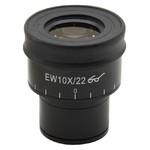 Optika Ocular micrométrico ST-163, WF10x/22mm para SZP