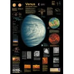 Planet Poster Editions Poster Venere