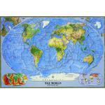 National Geographic Mappa del Mondo Planisfero fisico grande