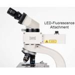 Hund Myco fluorescent illuminator for microscopes