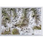 Georelief Harta magnetica Matterhorn region map (in German)