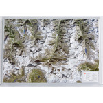 Georelief Harta regiunii Matterhorn (in germana)