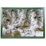 Georelief Map of the Matterhorn region in wooden frame (in German)