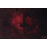 Immagine esempio: nebulosa Nordameraca NGC7000 nella costellazione del Cigno