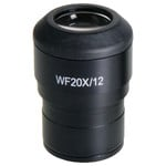 Euromex Okular NZ.6020, 20x/12 für Nexius, Paar