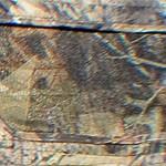 Detailbild Tarnmuster