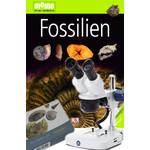 Euromex Stereomikroskop EduBlue 1/3 ED-1302-P, Fossilien-Set