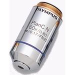 Olympus Objective PLCN 60X/0.8 Plan Achromat Objektiv