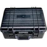 iOptron Hard Case for iEQ45