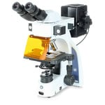 Microscope Euromex iScope,  IS.3152-PLFi/3, bino