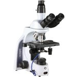 Euromex Microscopio iScope IS.1153-EPL/DF, trino