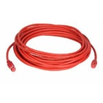 Baader Cable de red con conducción CAT 7 específica ColdTemp, 30m