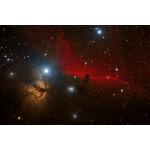 Flame Nebula and Horsehead Nebula, taken with the Omegon ADC, photo: Cesar Pinheiro