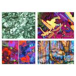LIEDER Rocce e minerali,  serie VI fossili e meteoriti (4 preparati)