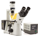 Optika Microscopio Mikroskop IM-3F-US, trino, invers, phase, FL-HBO, B&G Filter, IOS LWD W-PLAN, 40x-400x, US