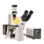 Optika Microscopio Mikroskop IM-3FL4-UK, trino, invers, FL-HBO, B&G Filter, IOS LWD U-PLAN F, 100x-400x, UK