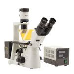 Optika Microscopio Mikroskop IM-3FL4-USIV, trino, invers, FL-HBO, B&G Filter, IOS LWD U-PLAN F, 100x-400x, US, IVD