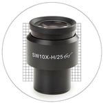 Euromex 10X/25mm SWF, 20x20 measuring grid eyepiece, Ø30 mm, DX.6010-SG (Delphi-X)
