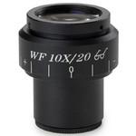 Euromex BB.6110 WF10X/20mm microscope micrometer eyepiece, Ø30mm, (for BioBlue.lab)