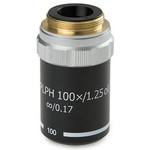 Euromex Obiettivo 100x/1,25 plan, fase, a molla, DIN, BB.8900 (BioBlue.lab)