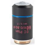 Motic Objective EC PL P, CCIS, plan, achro, (spannungsfrei) 60x/0.80, S, w.d. 0.35mm (BA-310 POL)